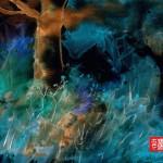 #8 BLUE TREE ENHANCED
